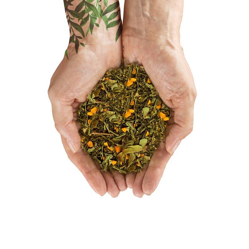 organiczna herbata Home ZiK2
