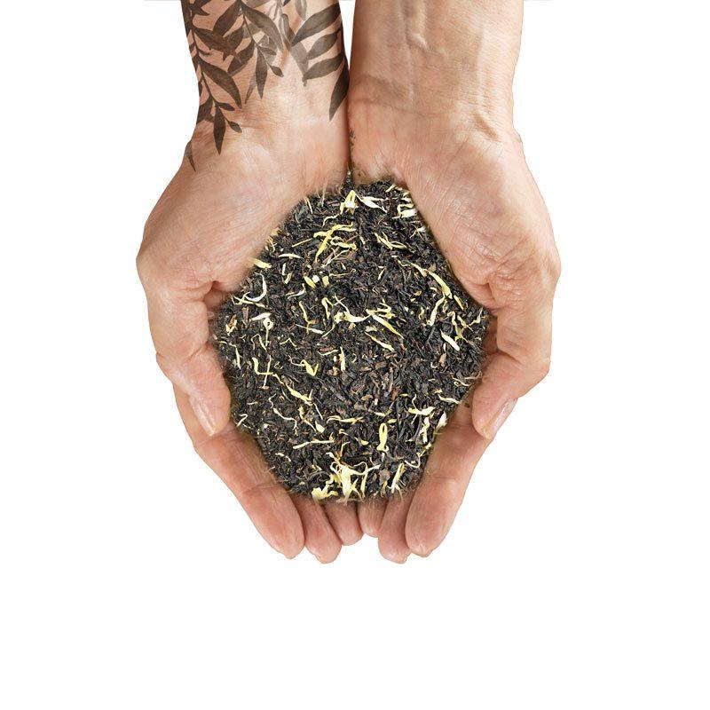 organiczna herbata Home EG2