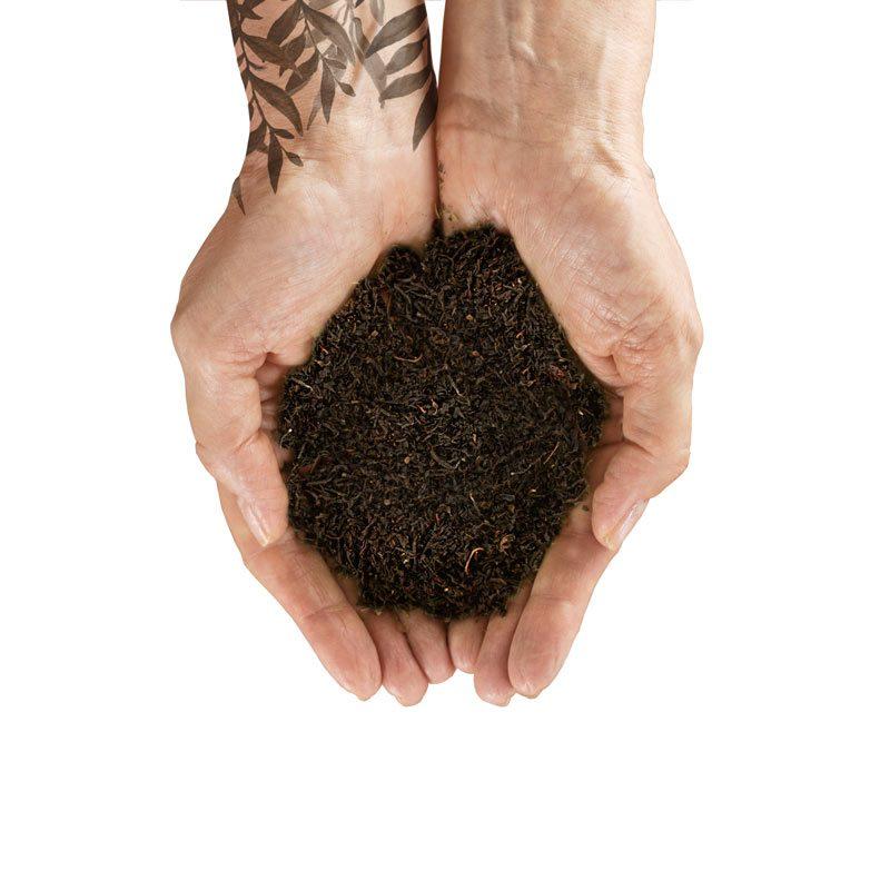 organiczna herbata Home EiB2