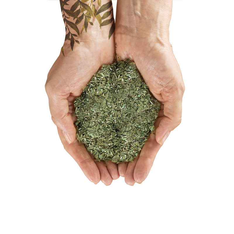 organiczna herbata Home YM2