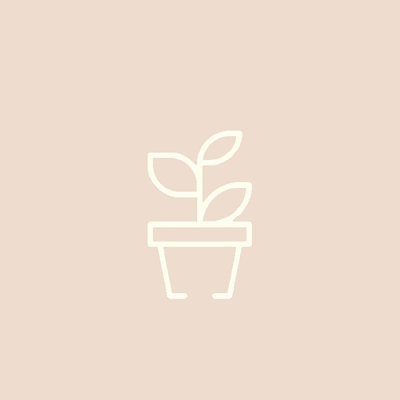 Wartościowe Składniki organiczna herbata Home 2 2